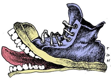 Como ponerte en los zapatos del otro psicologos df
